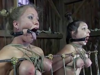 Tied up and gagged slave babes in hardcore BDSM threesome