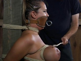 Imposing bitch in bondage does everything to please her master