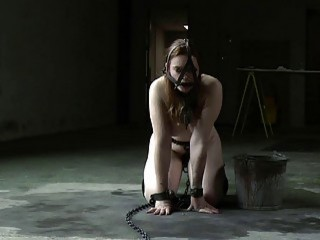 Horny bitch in bondage sucks while being a subject to slavery