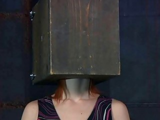 Calico loves having things on her crazy head BDSM porn