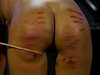 She bends over and then gets caned on her ass