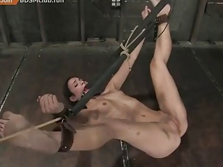 Maledom in wild BDSM session for a chick in ropes